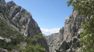 Fearless Velebit